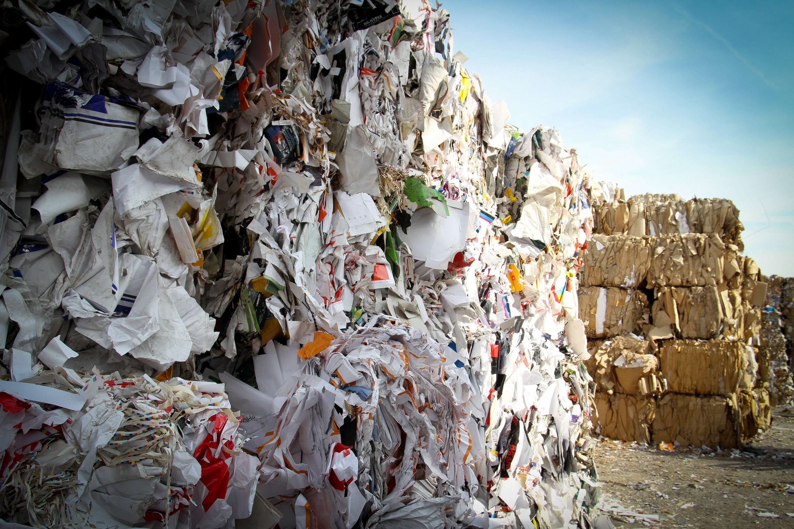 Got Junk? Sustainable Waste Disposal Programs Can Solve Your Trash Woes